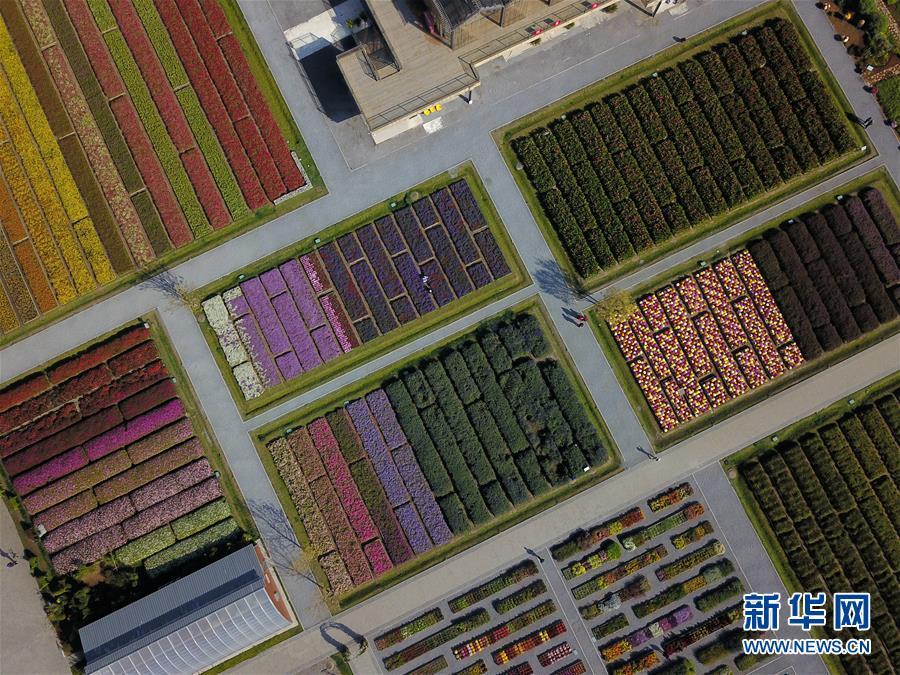 """(新华全媒头条·图文互动)(11)难忘的""""世园影象"""" 配合的绿色寻求——写在北京世园会落幕之际"""
