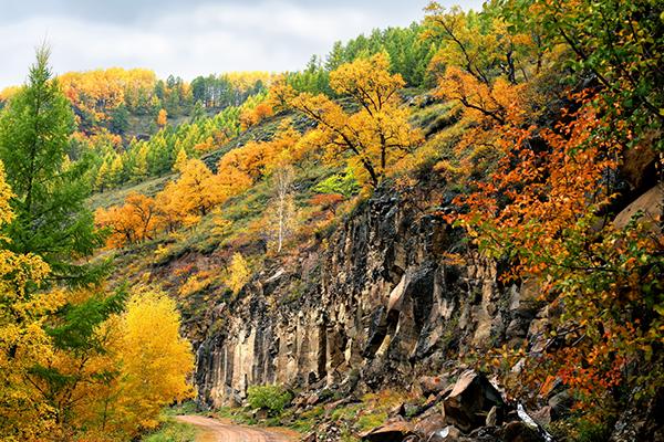 2019上半年全国森林旅游游客量突破9亿