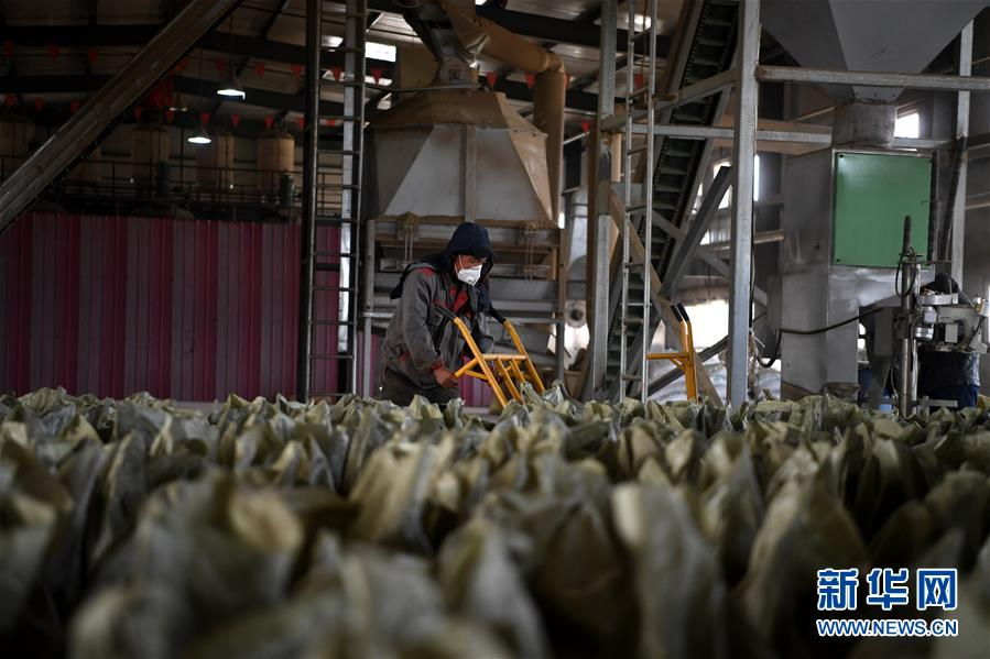 (新华全媒头条·图文互动)(7)为美丽中国增添绿色动力——2019年太原能源低碳发展论坛释放绿色发展新信号