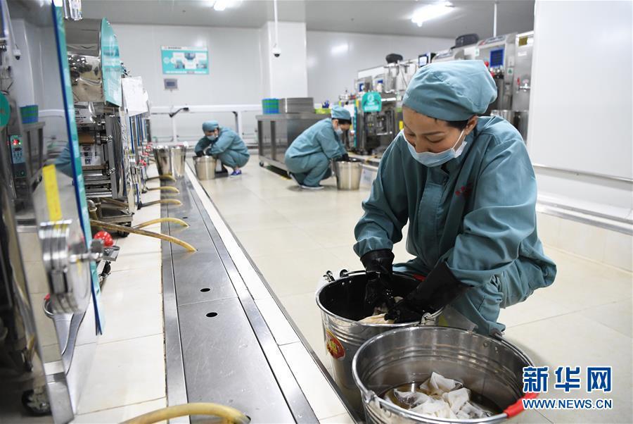 (新华全媒头条・图文互动)(3)让中华瑰宝为呵护人类健康再放异彩――我国中医药传承创新发展迈进新时代