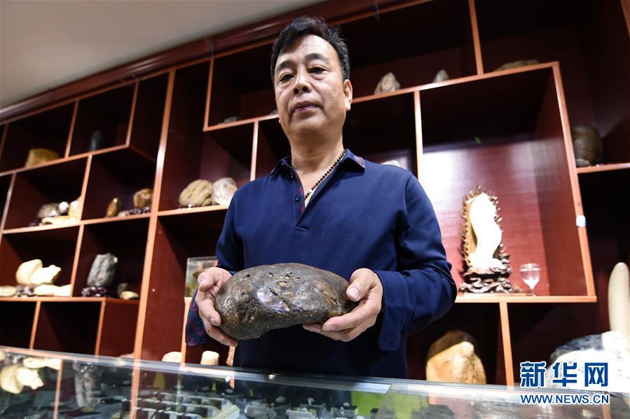 (圖文互動)(3)黑龍江海倫發現罕見古生物群