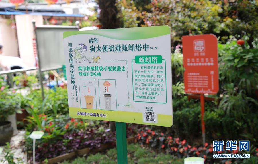 """(新華全媒頭條·圖文互動)(5)上海:""""三只桶""""裏看變化"""