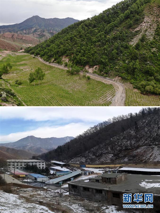 (新華全媒頭條·圖文互動)(8)綠色的啟示——西部地區生態問題典型個案再調查