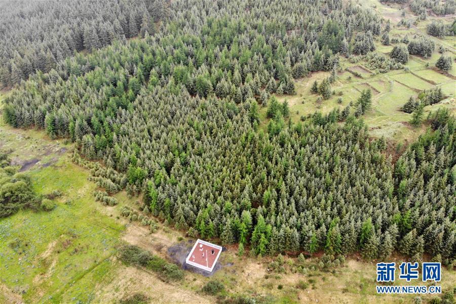 (新華全媒頭條·圖文互動)(11)綠色的啟示——西部地區生態問題典型個案再調查