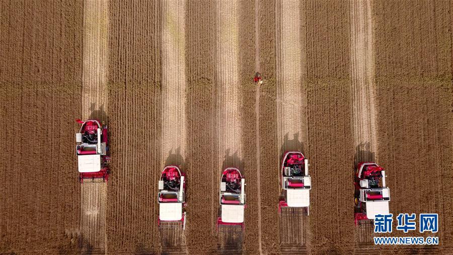 (新华全媒头条·图文互动)(3)新华社评论员:为夺取全面建成小康社会伟大胜利而奋斗——一论贯彻落实中央经济工作会议精神