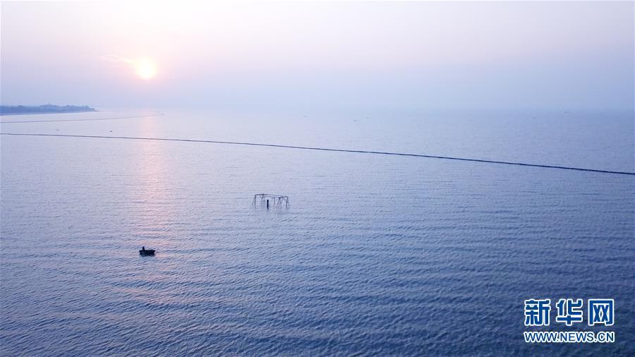 (新華全媒頭條·圖文互動)(2)大湖見證——長三角三大淡水湖綠色發展之路