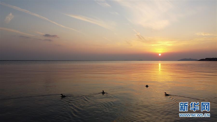 (新華全媒頭條·圖文互動)(4)大湖見證——長三角三大淡水湖綠色發展之路