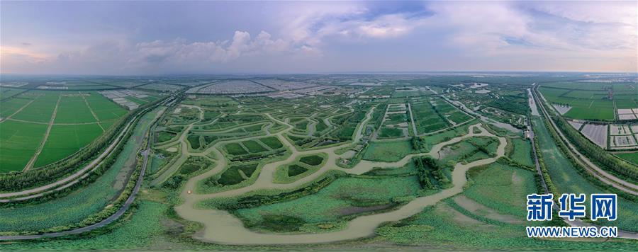 (新華全媒頭條·圖文互動)(11)大湖見證——長三角三大淡水湖綠色發展之路