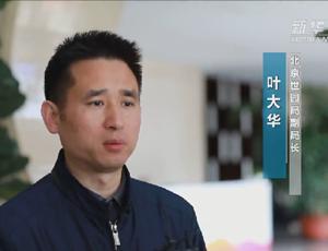 对话北京世园局副局长叶大华