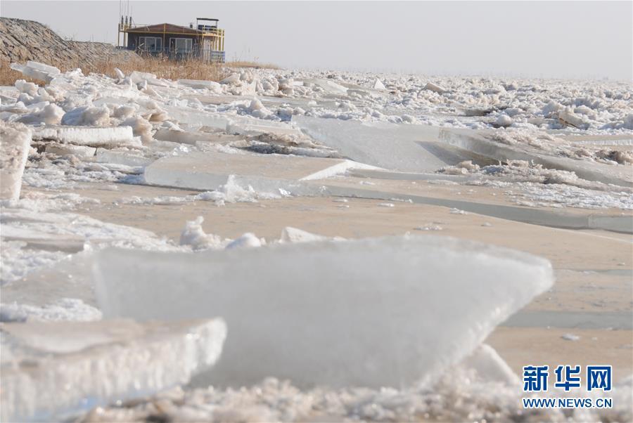 (圖文互動)(2)千裏冰封 黃河內蒙古段持續封河