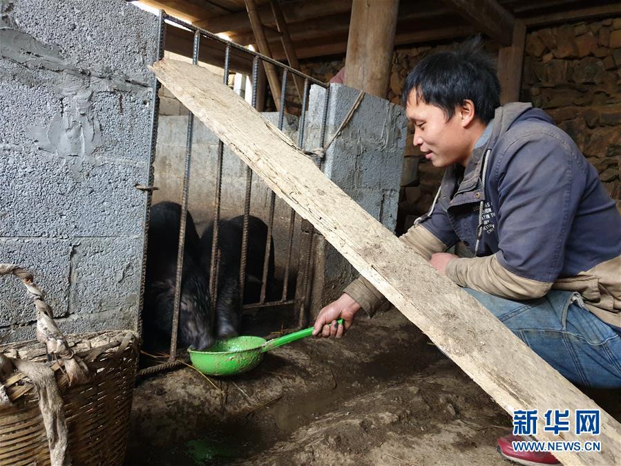 """(新春走基層·圖文互動)(3)""""雲上瑤寨""""的新年變化"""