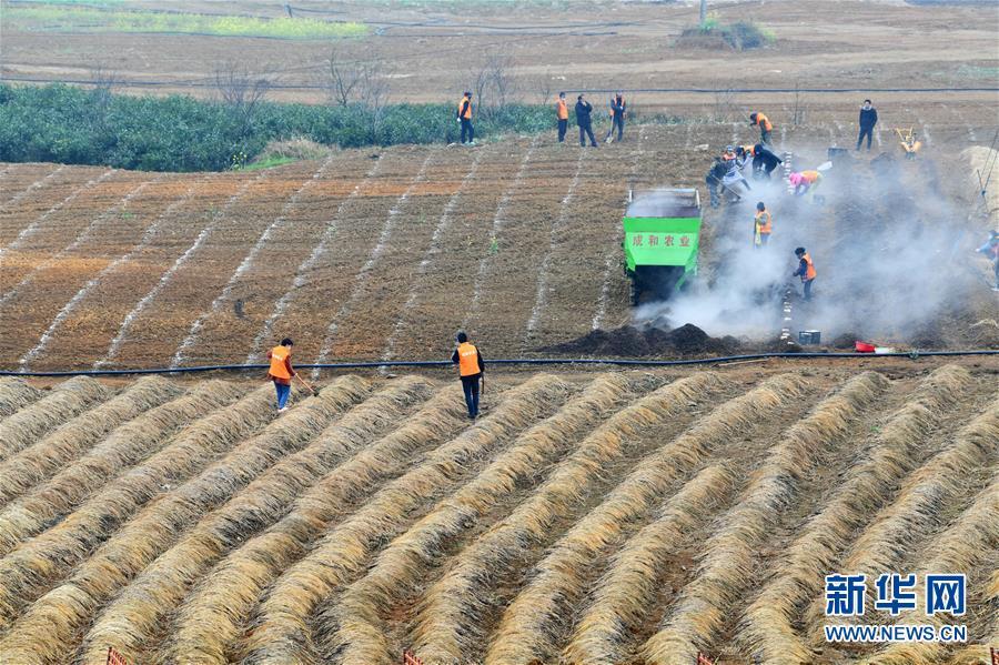 (在习近平新时代中国特色社会主义思想指引下——新时代新作为新篇章·习近平总书记关切事·图文互动)(3)确保不误农时,保障夏粮丰收——各地抓好春耕生产在行动