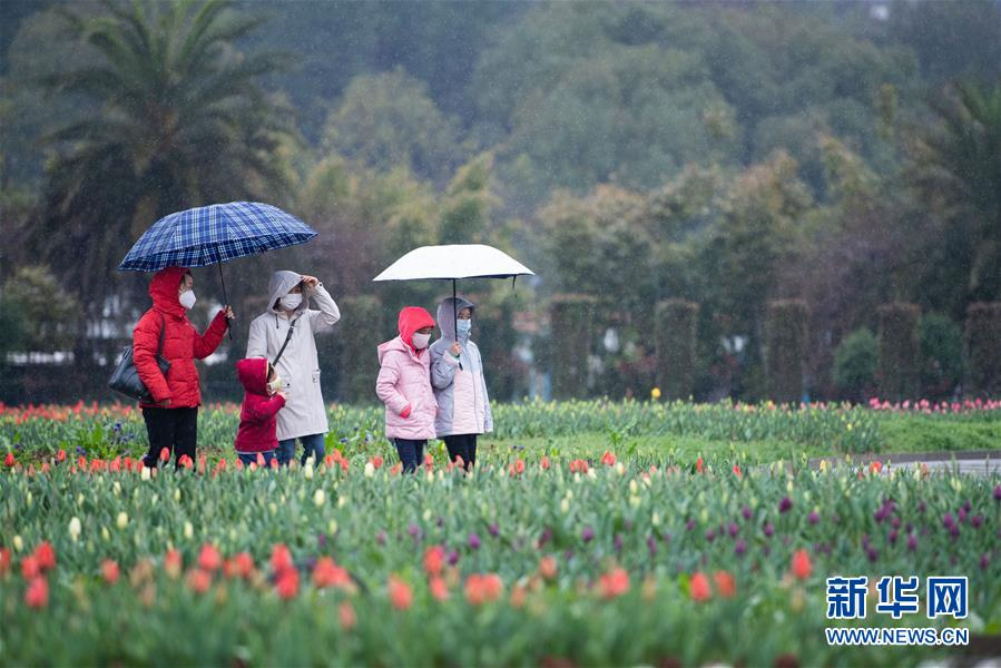 (圖文互動)(4)湖南:響應降級 經濟提速 防控不松