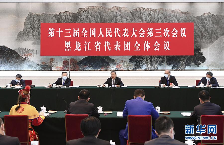 赵乐际在参加黑龙江代表团审议时强调 以优良党风政风落实政府工我的电脑会说话粤语
