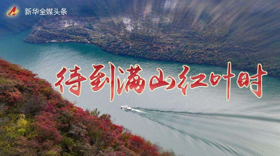 待到满山红叶时――三峡重庆库区践行新发展理念面面观
