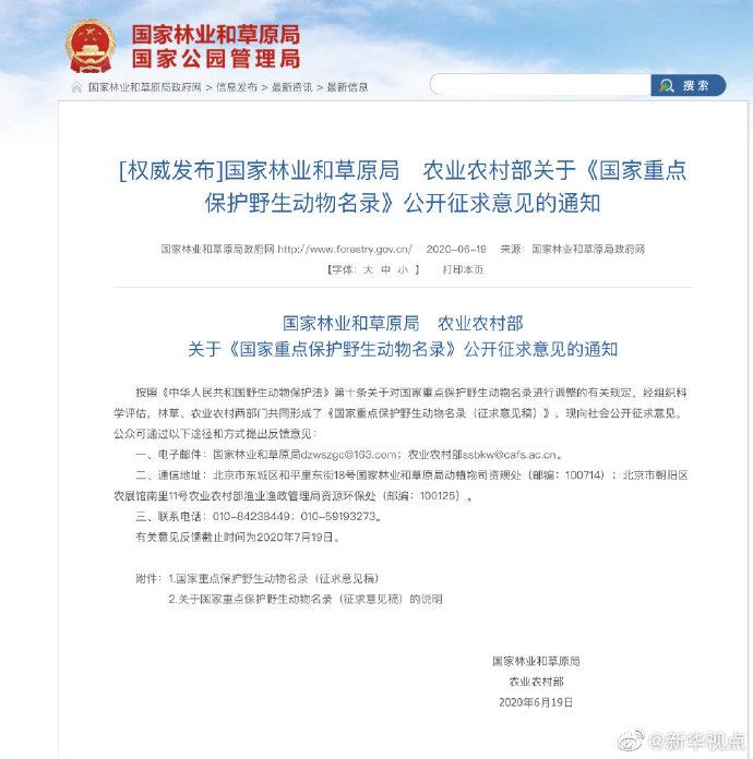 向社会公开征求意见了!长江江豚拟升级为国家一级保护动物