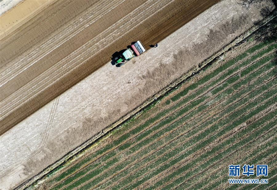 (新华全媒头条·图文互动)(11)中国北斗 服务全球——写在我国完成北斗全球卫星导航系统星座部署之际