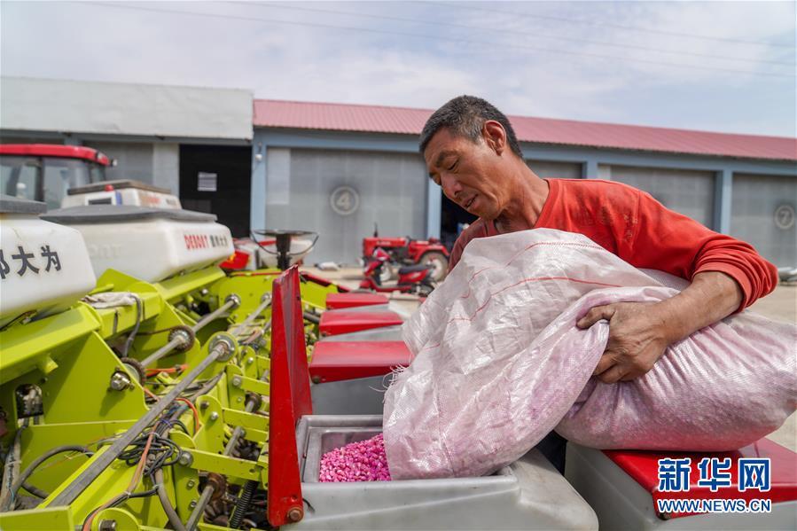 """(在习近平新时代中国特色社会主义思想指引下——新时代新作为新篇章·习近平总书记关切事·图文互动)(8)让每一寸耕地都成为丰收的沃土——我国加强耕地保护推进""""藏粮于地"""""""