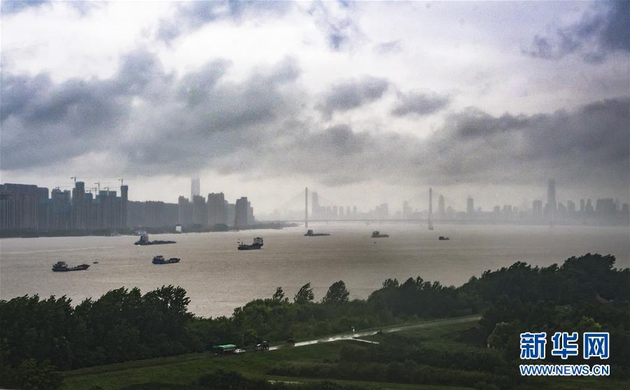 (防汛抗洪)(6)長江漢口站水位達到警戒水位