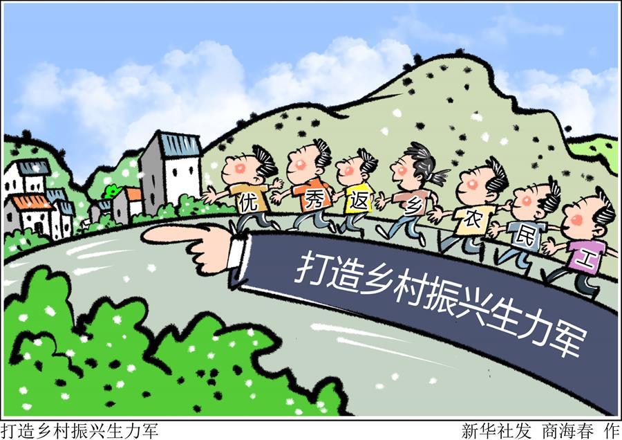(圖表·漫畫)〔新華時評·走向我們的小康生活〕打造鄉村振興生力軍