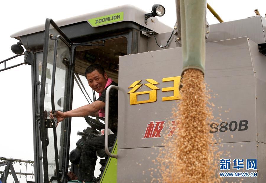 (在习近平新时代中国特色社会主义思想指引下——新时代新作为新篇章·习近平总书记关切事·图文互动)(3)食为政首——稳住农业基本盘增添发展底气
