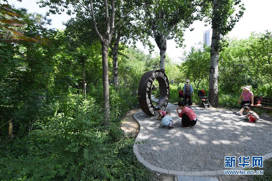 (新华全媒头条·图文互动)(3)老胡同里的新生活——北京老城探访记