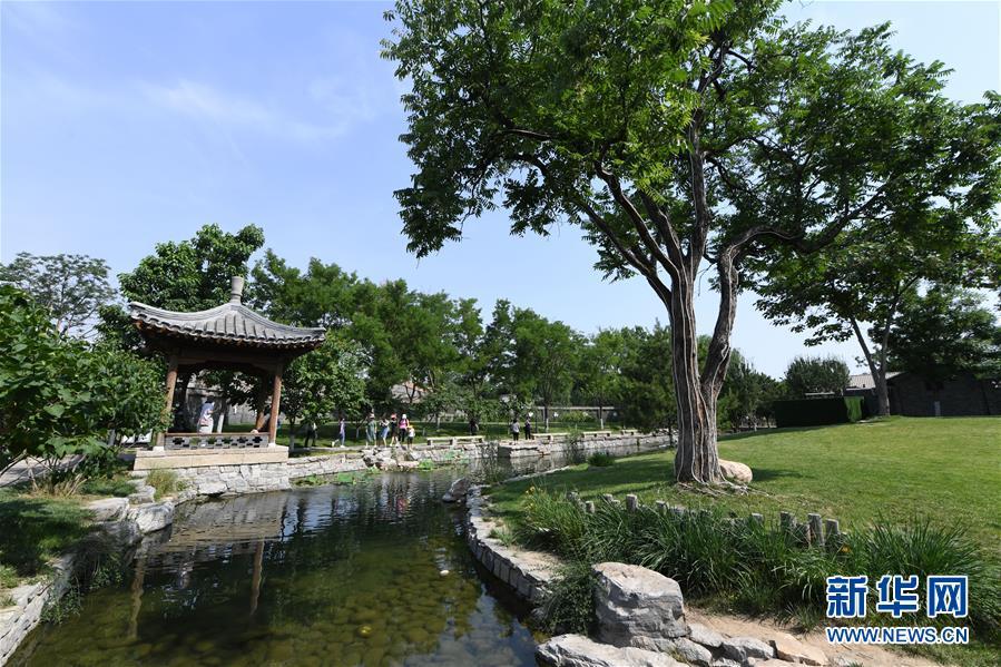 (新华全媒头条·图文互动)(9)老胡同里的新生活——北京老城探访记