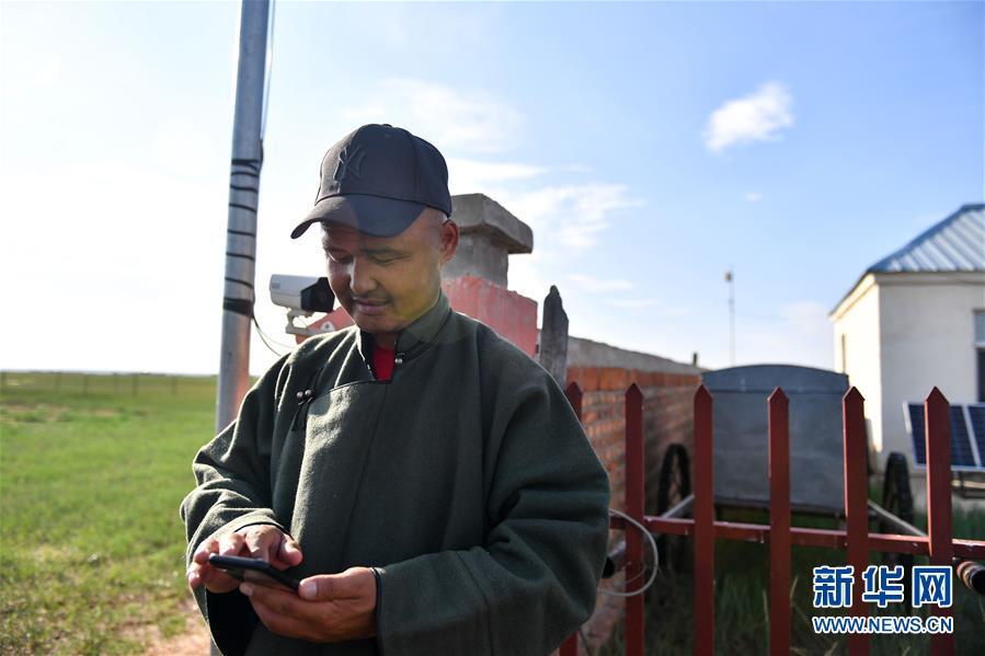 (走向我們的小康生活·圖文互動)(5)草原有了網,手機能放羊——看呼倫貝爾大草原牧民生活變了樣