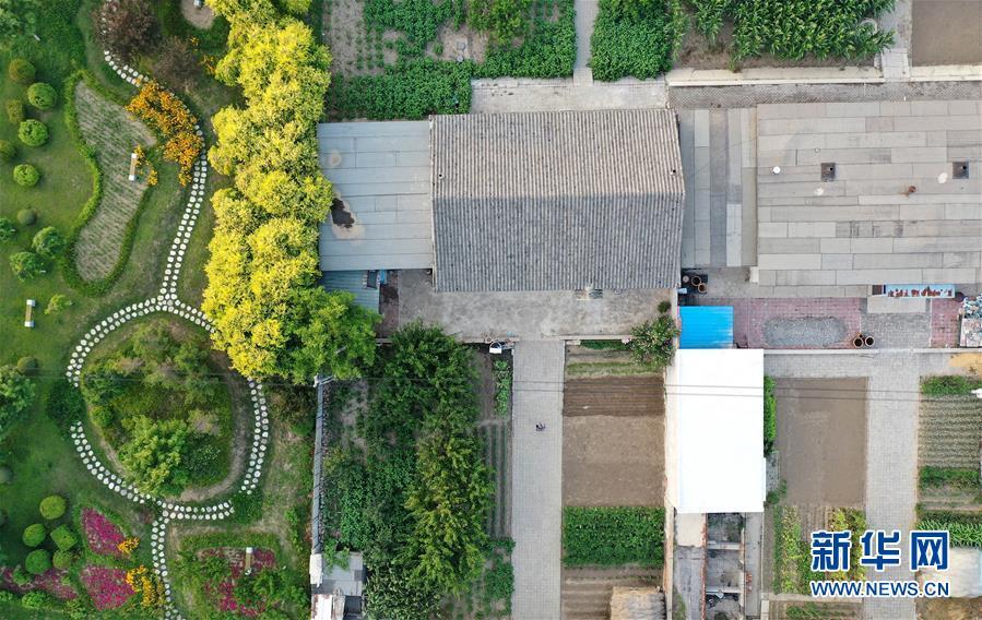 """(新华全媒头条·走向我们的小康生活·图文互动)(1)""""南大荒""""变""""稻蟹乡""""——资源枯竭型城市盘锦的乡村振兴之路"""