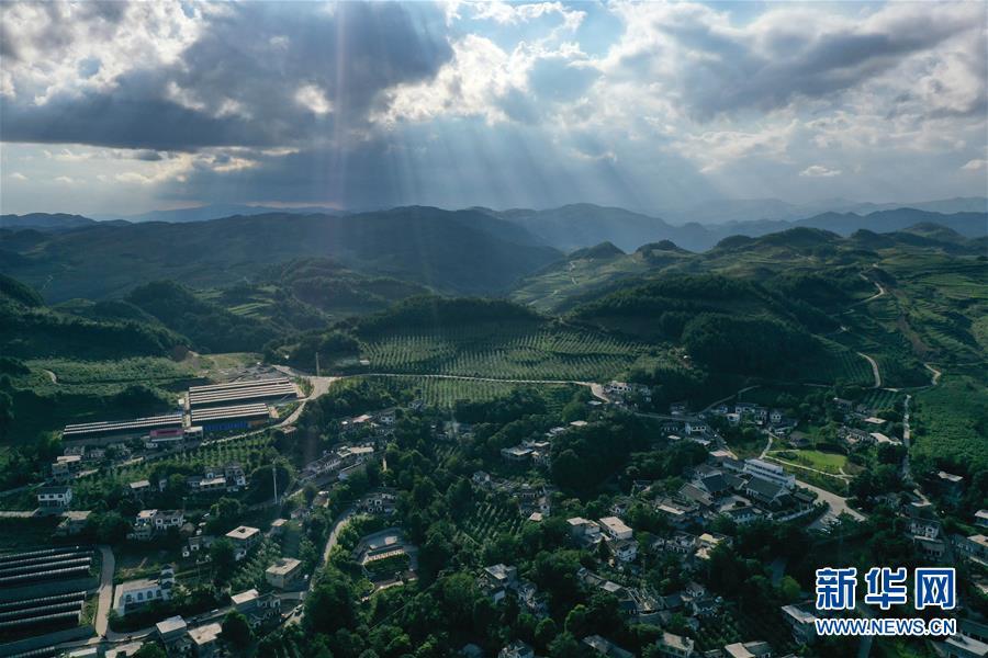 (走向我們的小康生活)(1)貴州海雀村:將綠水青山變成戰勝貧困的金山銀山
