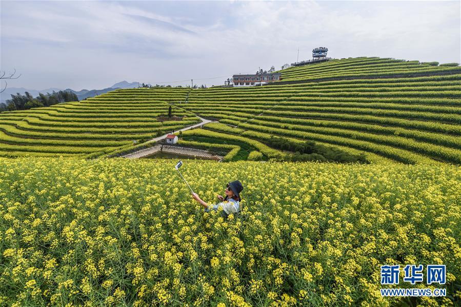 (新华全媒头条·图文互动)(4)生态文明之光照耀美丽中国——写在绿水青山就是金山银山理念提出15周年之际
