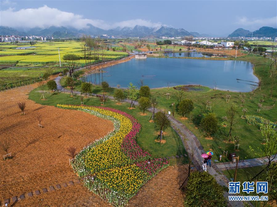 (新华全媒头条·图文互动)(7)生态文明之光照耀美丽中国——写在绿水青山就是金山银山理念提出15周年之际