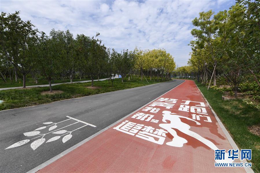 """(新华全媒头条·图文互动)(3)""""绣""""出古都新生活——城市精细化治理的北京探索"""
