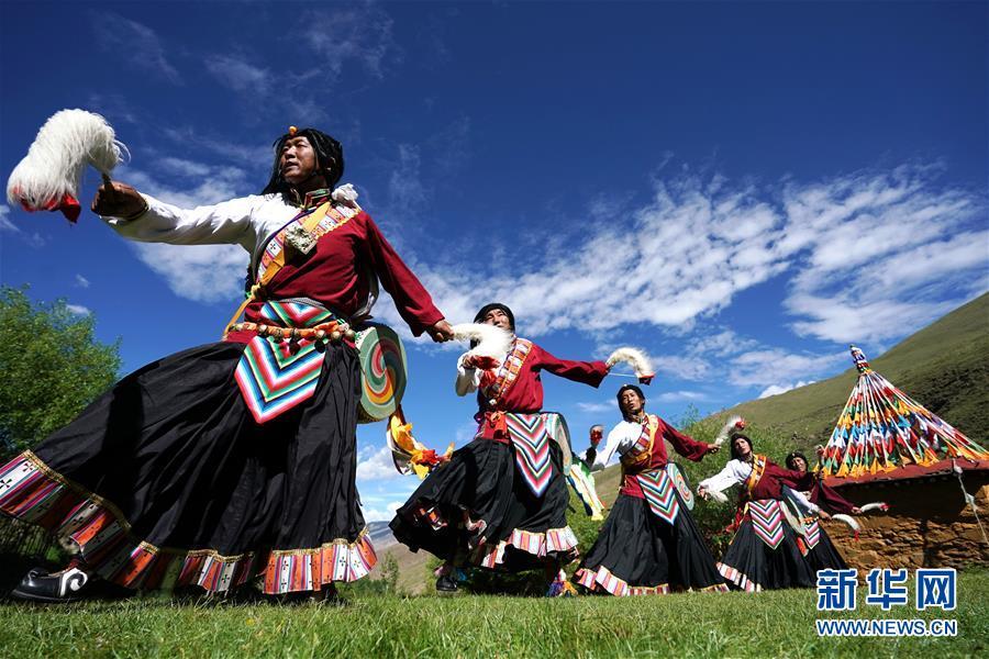 庄重的承诺 历史的奇迹——西藏自治区决战脱贫攻坚纪实