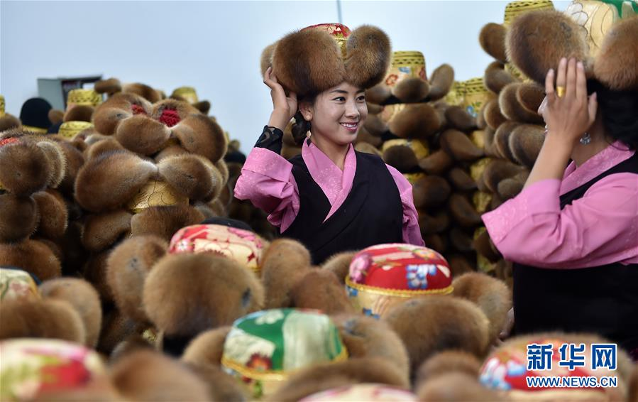 (新华全媒头条·图文互动)(4)庄重的承诺 历史的奇迹——西藏自治区决战脱贫攻坚纪实