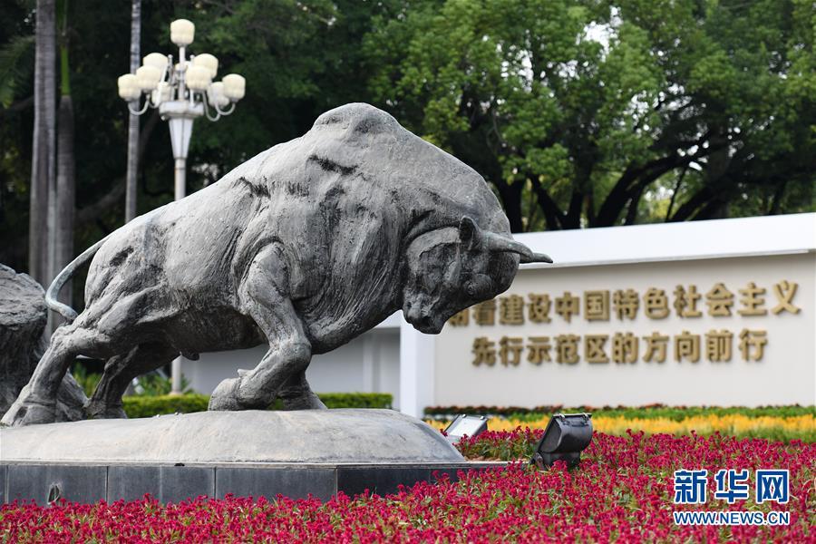 (新华全媒头条·图文互动)(9)创造新时代中国特色社会主义的更大奇迹——以习近平同志为核心的党中央关心经济特区发展纪实