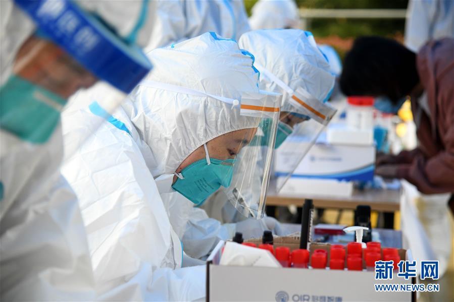 (聚焦疫情防控)(3)青岛全员核酸检测:已采样超过560万份