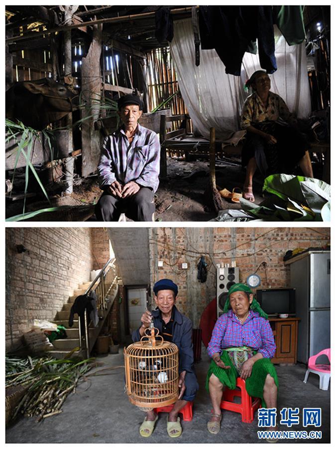 (新華全媒頭條·圖文互動)(4)木棉花開紅勝火——廣西千裏邊境線脫貧紀實