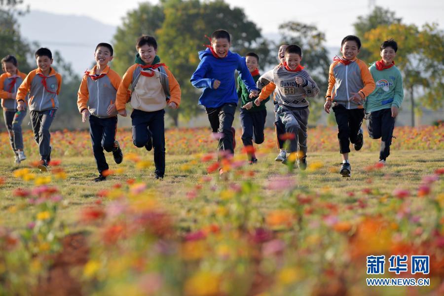 世界儿童日将至 一起看看大山里的那些花儿