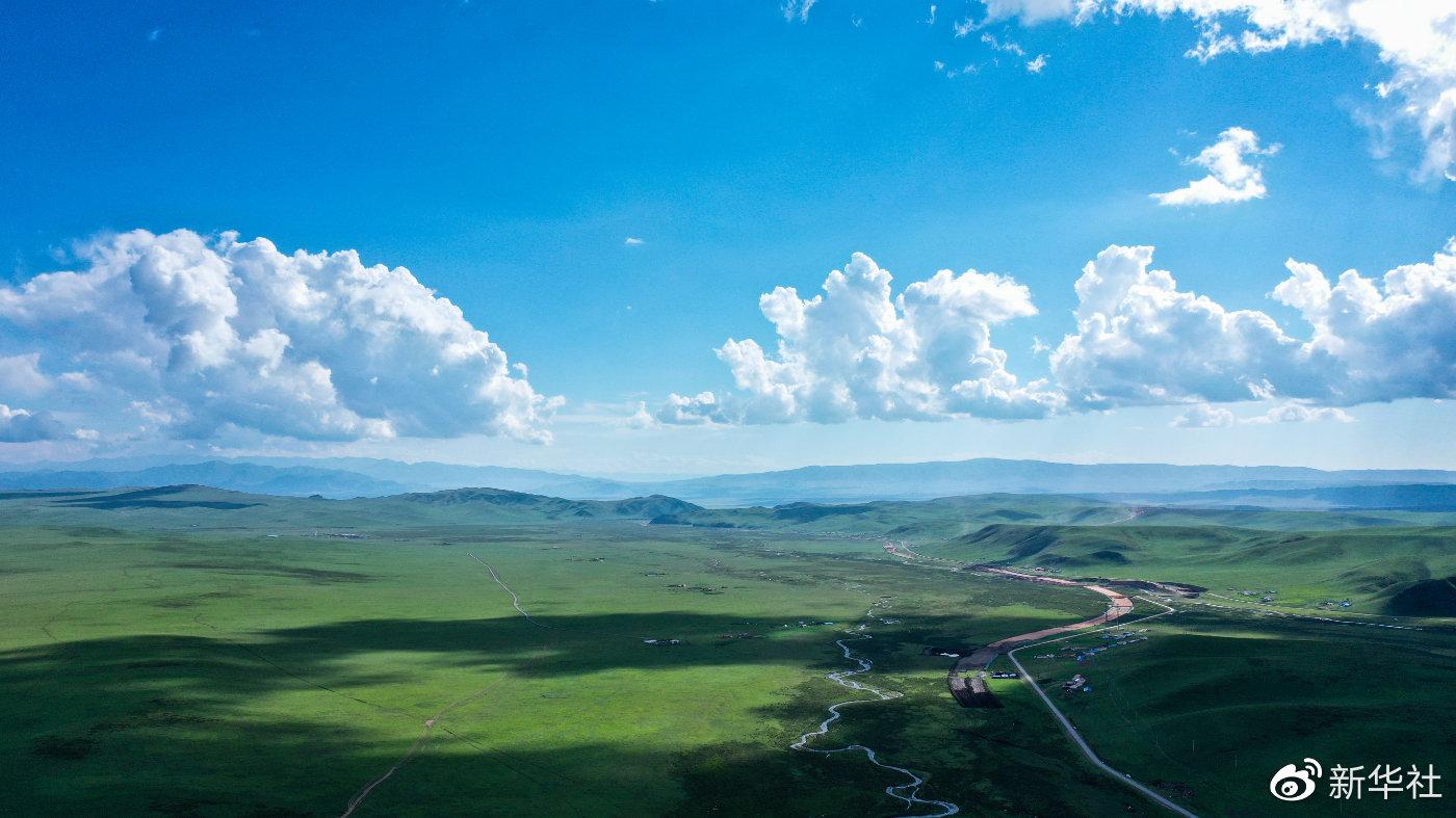 南阳市1110万亩小麦收割完毕