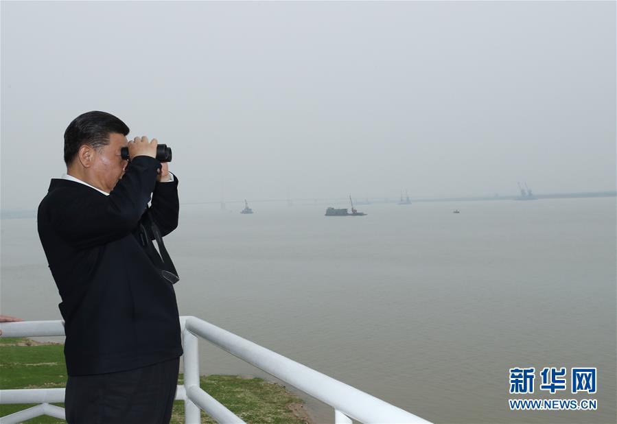 (时政)(19)习近平主持召开深入推动长江经济带发展座谈会并发表重要讲话