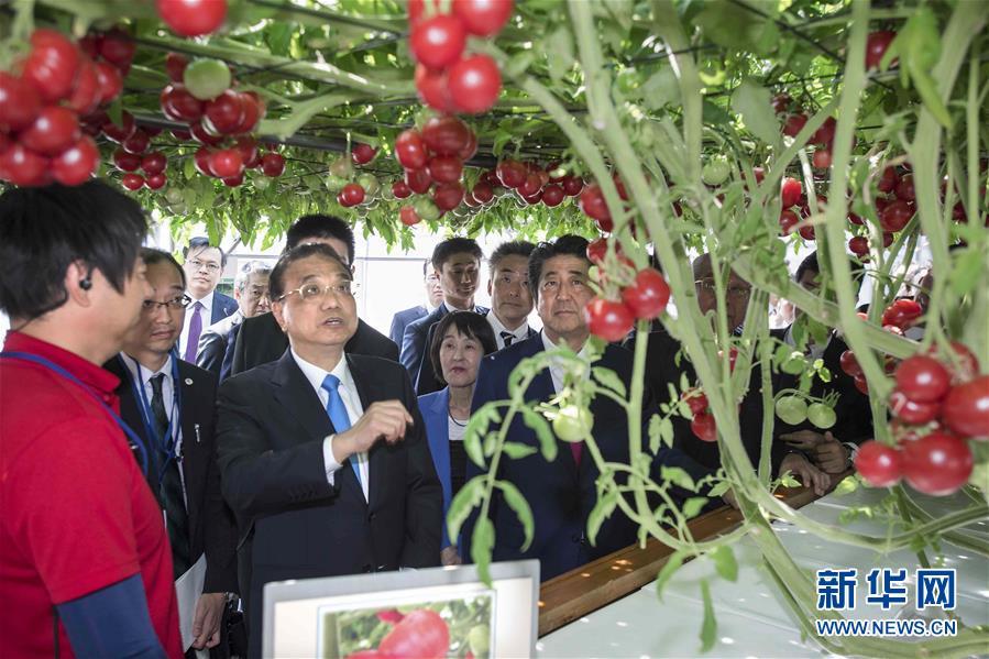 (时政)李克强参观北海道惠庭市现代生态农场