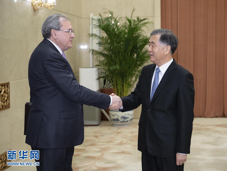 汪洋会见俄罗斯联邦公众院主席法捷耶夫