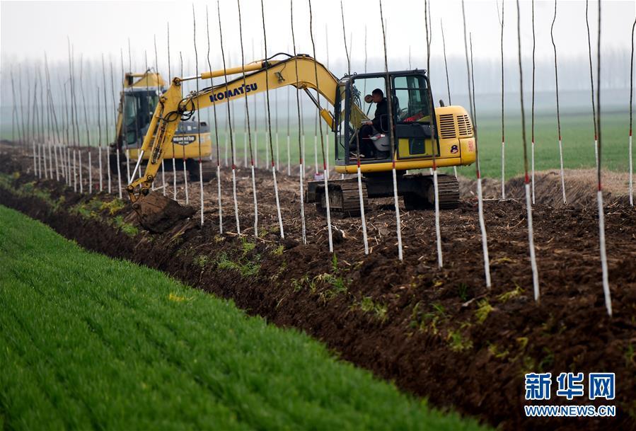 (在習近平新時代中國特色社會主義思想指引下——新時代新作為新篇章·習近平總書記關切事·圖文互動)(2)為農田注入硬核生産力——一些地方春耕中農業科技創新掃描