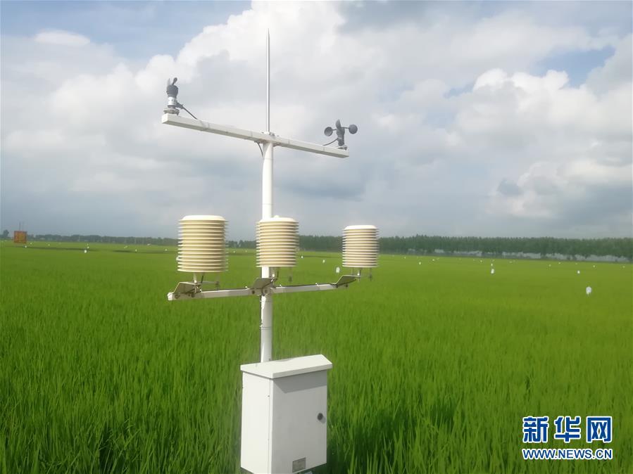 (在習近平新時代中國特色社會主義思想指引下——新時代新作為新篇章·習近平總書記關切事·圖文互動)(8)為農田注入硬核生産力——一些地方春耕中農業科技創新掃描
