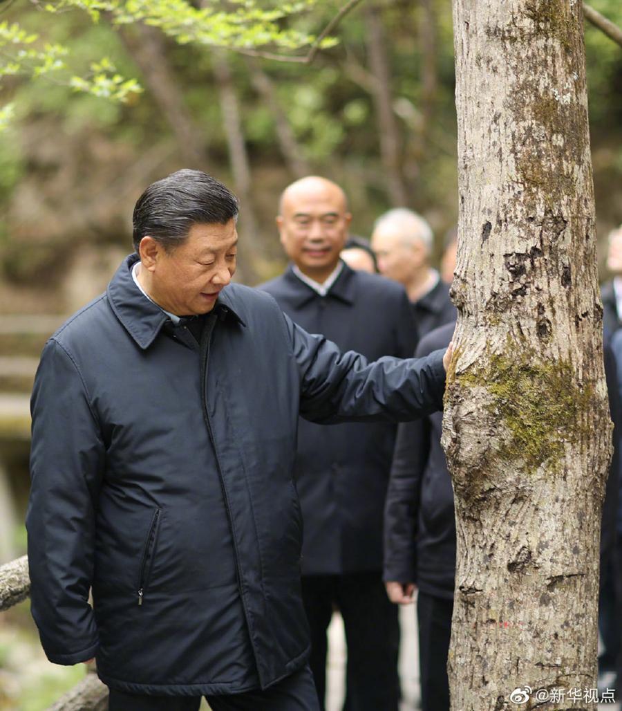 习近平:要做守护秦岭生态的卫士