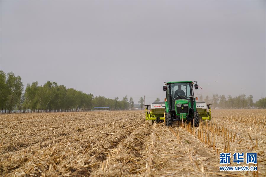 """(在习近平新时代中国特色社会主义思想指引下——新时代新作为新篇章·习近平总书记关切事·图文互动)(8)让农民挑上""""金扁担""""——农业现代化的生动实践扫描"""