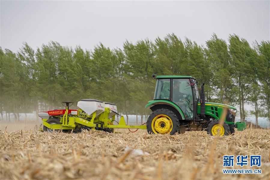 """(在习近平新时代中国特色社会主义思想指引下——新时代新作为新篇章·习近平总书记关切事·图文互动)(9)让农民挑上""""金扁担""""——农业现代化的生动实践扫描"""