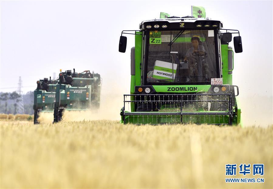 """(在习近平新时代中国特色社会主义思想指引下——新时代新作为新篇章·习近平总书记关切事·图文互动)(12)让农民挑上""""金扁担""""——农业现代化的生动实践扫描"""