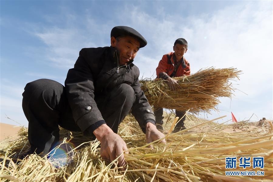 (在习近平新时代中国特色社会主义思想指引下——新时代新作为新篇章·习近平总书记关切事·图文互动)(5)绿色映底蕴,山水见初心——生态优先、绿色发展持续造福群众美好生活
